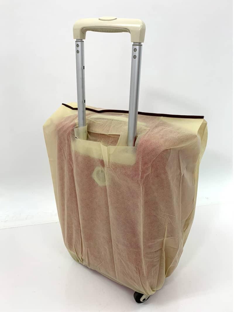 スーツケースにスーツケースカバーを装着(伸縮ハンドルを伸ばしたバックスタイル)