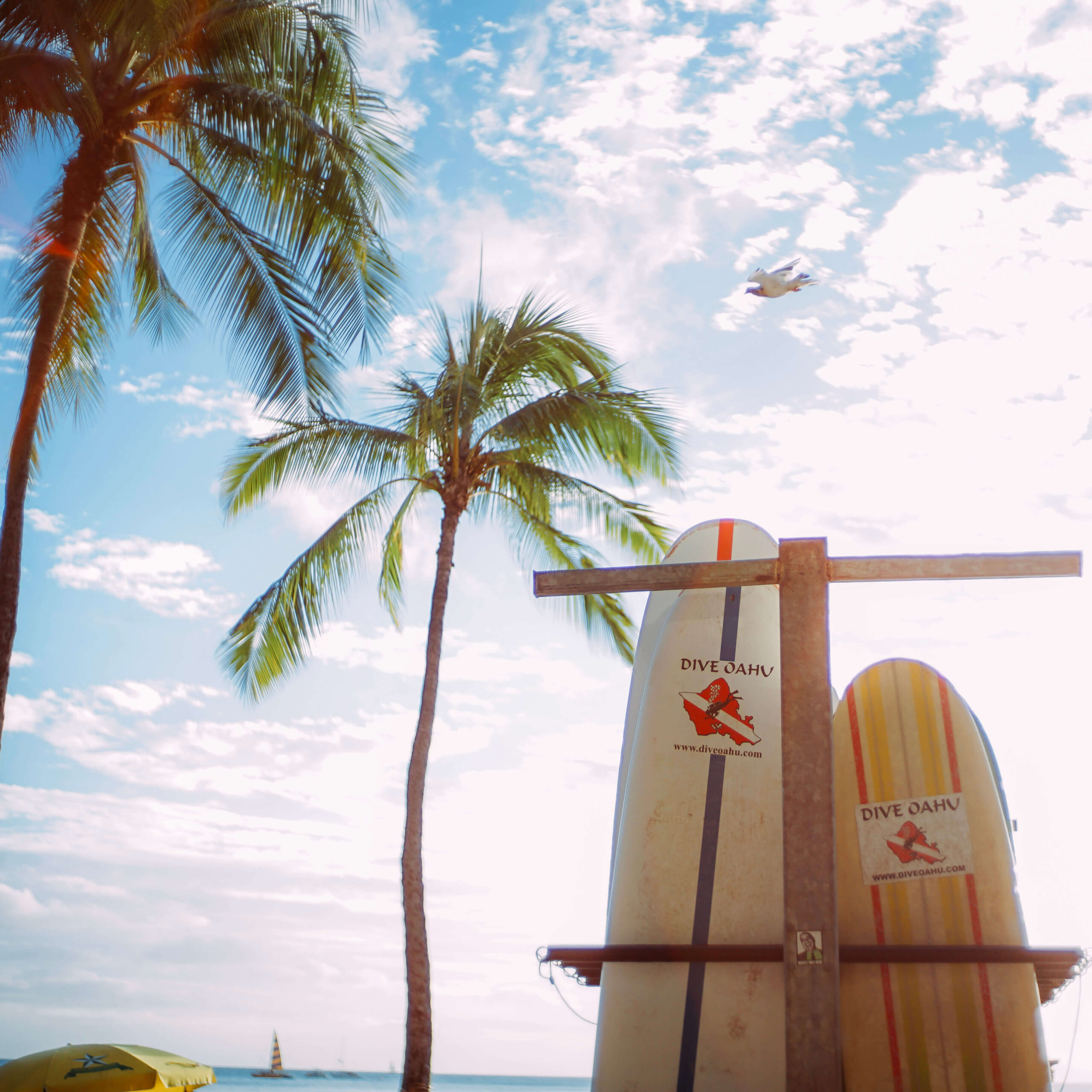 ハワイのビーチとサーフィンボード