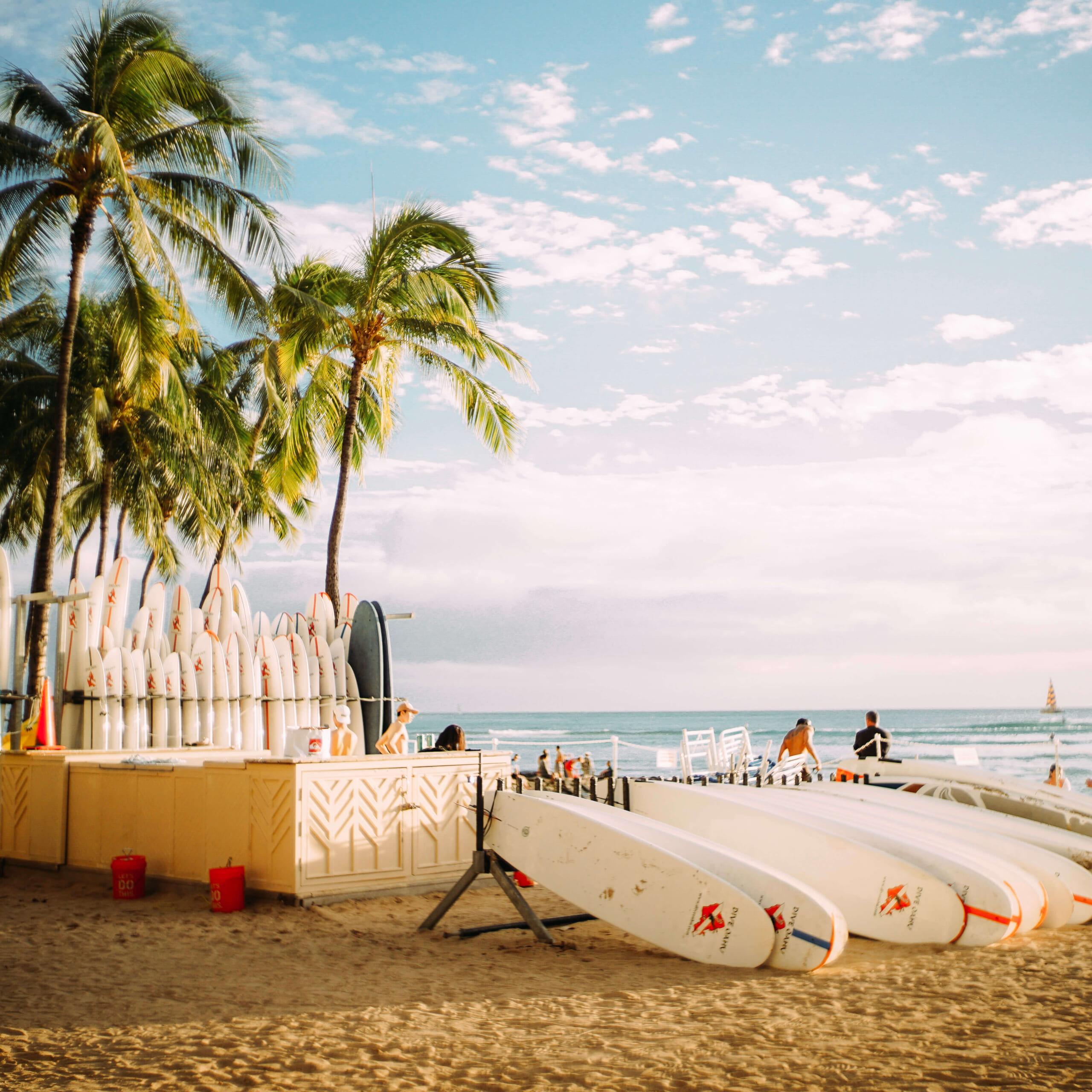 ハワイでのマリンアクティビティ